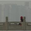Beijing's hazardous pollution sparks Chinese media anger