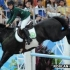 London 2012 Olympics: Saudis allow women to compete